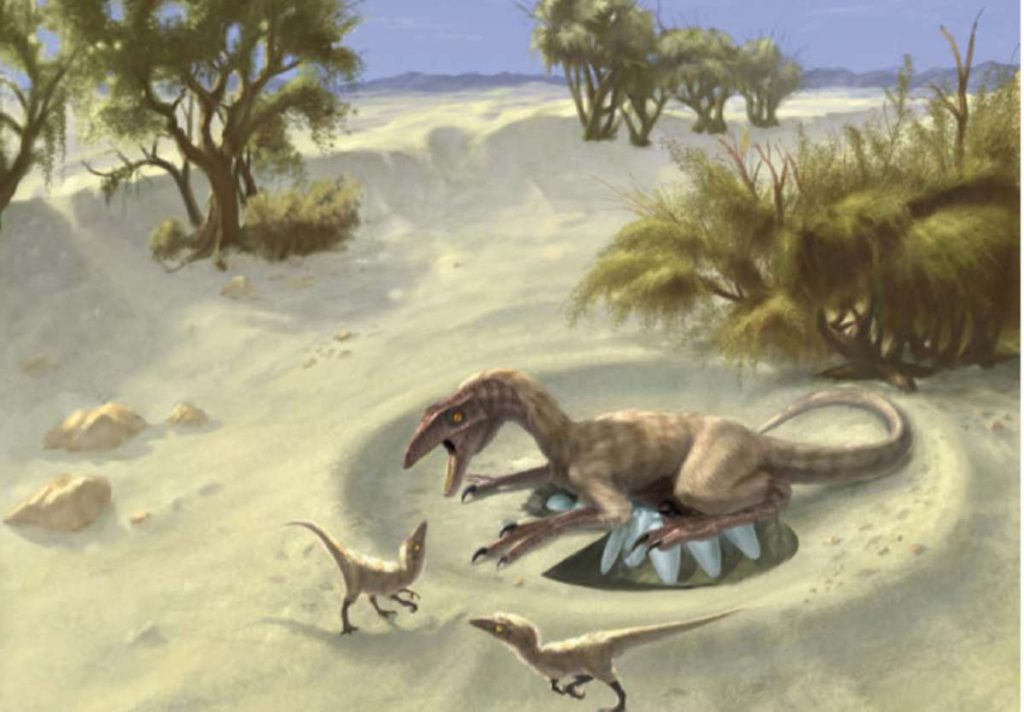 oviraptor_nesting