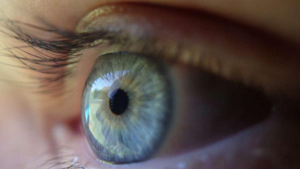 eye-369557_1920