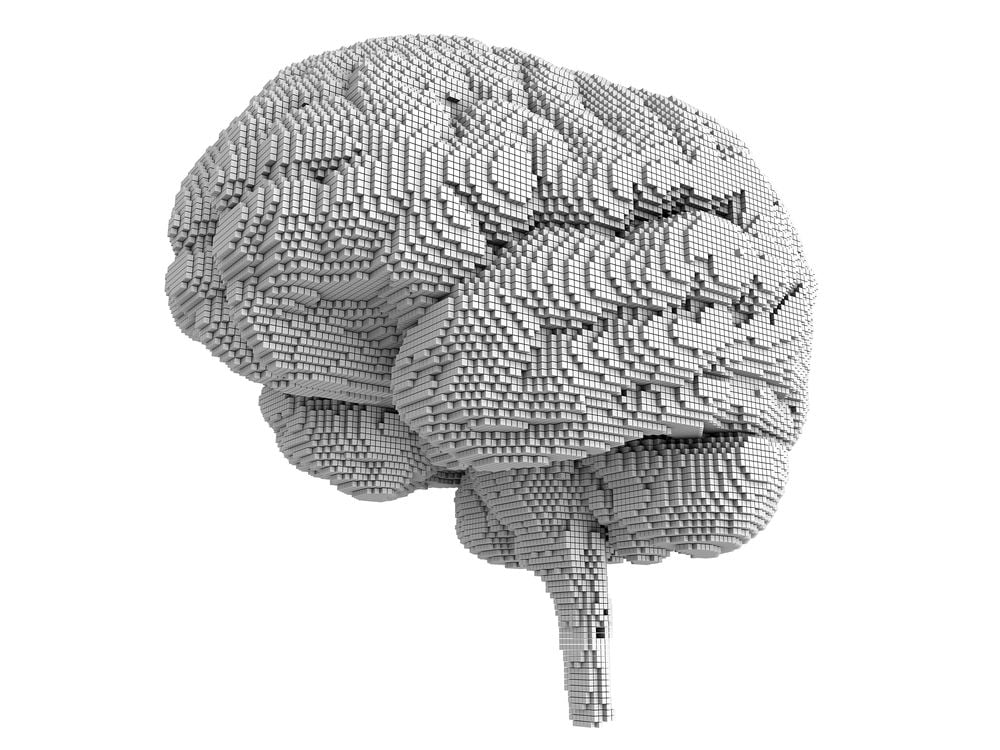 brain-bits