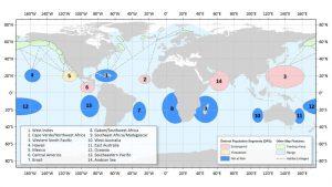 NOAA tarafından gözlemlenen 14 yeni kambur balina haritası