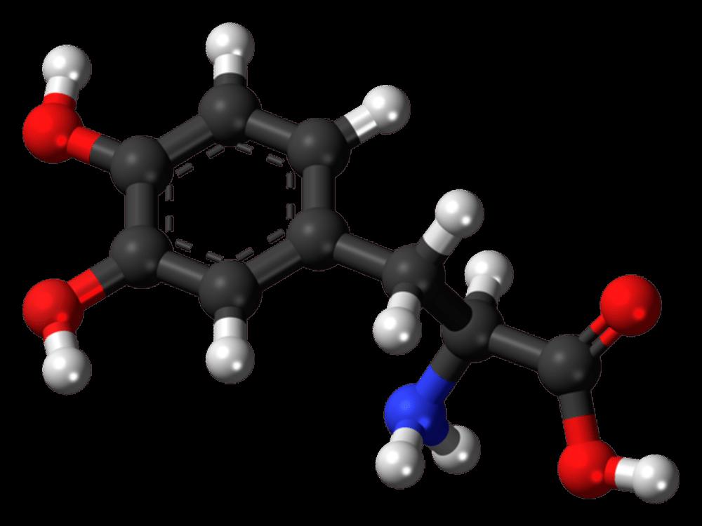 Parkinson hastalığının tedavisinde kullanılan Levodopanın gösterimi. Bir biyoteknoloji firması ileri seviyede Parkinson hastalarında DNA iğnesi kullanarak Levodopanın sürekli etkili kalmasını sağlıyor.