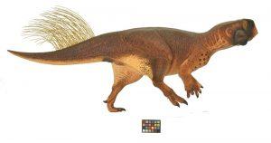 Psittacosaurus'un yandan görüntüsü Araştırmacılar fosili kullanarak dinozorun olası renkleri ile bilgisayar modeli yapmışlar