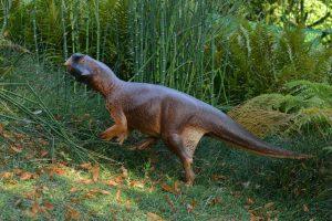 Psittacosaurus'un 3 boyutlu modeli Araştırmacılar dinozorun hangi ortama adapte olduğunu anlamak için fosilden edindikleri bilgilerle tam ölçekli bir model yaparak bu modeli farklı ortamlara yerleştirdiler.