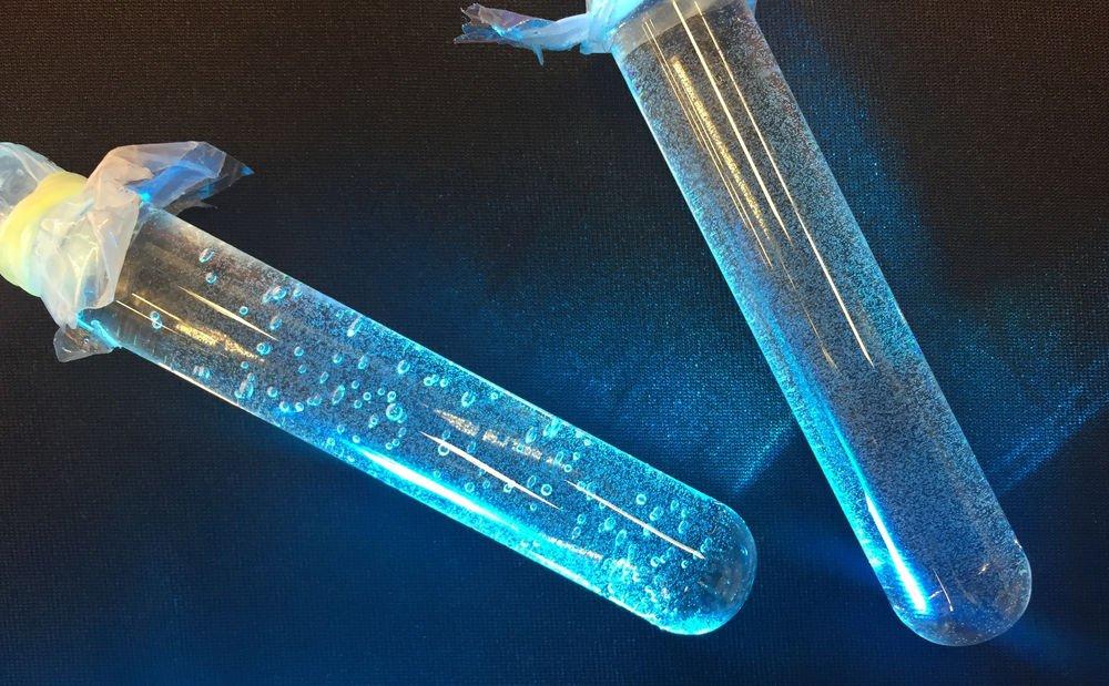 """Kızgın Damlacık Dedektörü Nature'dan Alınmış: Soldaki dedektör, makroskopik kabarcıklardan da anlaşılacağı üzere nötronlara maruz bırakılmış. Dedektörler farklı objelerin nötron radyografi değerlerini karşılaştıran bir """"Sır Vermeyen Tanıtma"""" metodu deneyinde kullanıldı."""