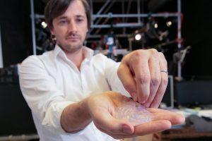 Deneyde kullanılan implant, bir primat beyin silikon modeliyle birlikte gösterilmiş