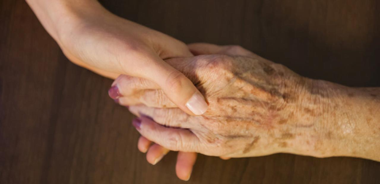 Yaşlı insanlarla hayvanlar arasındaki temel fark nedir