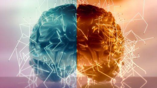 Beynin Sağ ve Sol Tarafının Vücutta Kontrol Ettiği Bölgeler Hakkında Yanılmış Olabiliriz