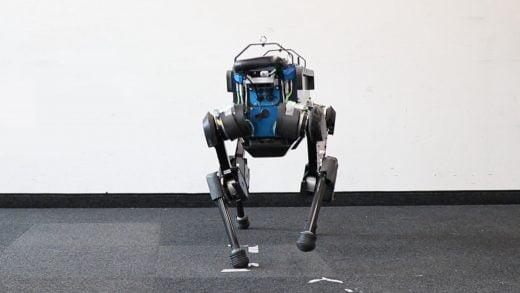 Yapay Zeka, Bu Robot Köpeği Çok İyi Bir Çocuk Haline Getirdi