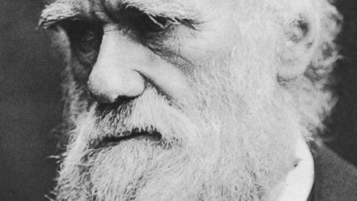 Charles Darwin Yaşasaydı Bu Tweet'leri Atardı