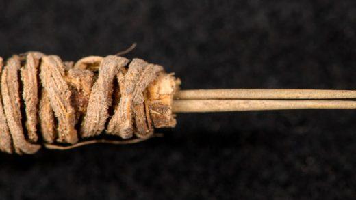 Bu Basit Alet, 2.000 Yıllık Bir Dövme Tabancası
