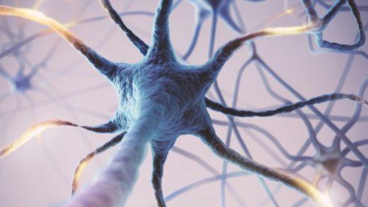 'Aşırı' Beyin Faaliyeti, Ömrün Daha Kısa Olmasıyla Bağlantılandı